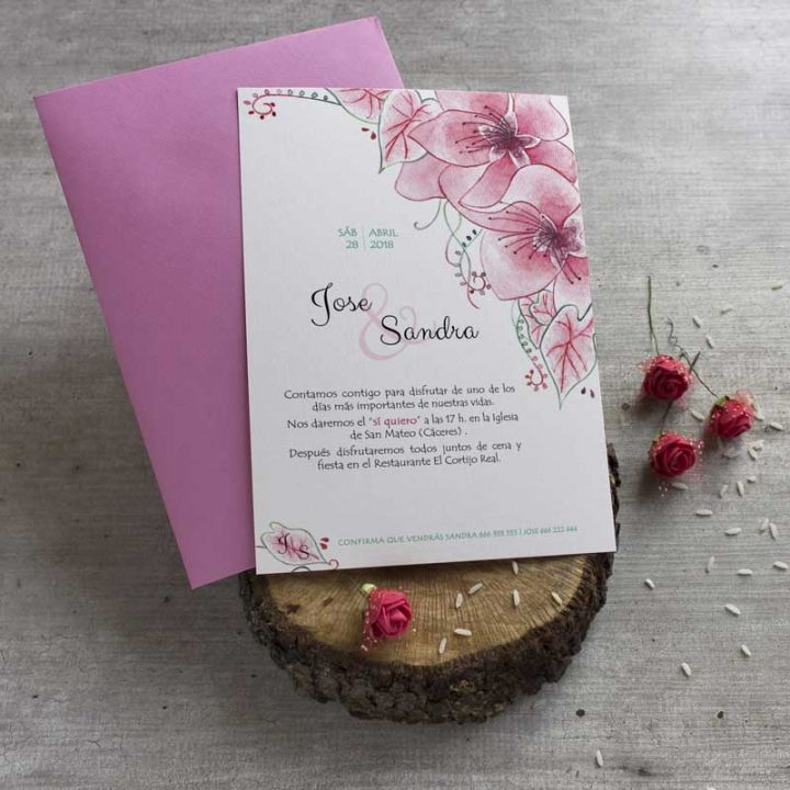 L piz creativo ilustraciones hechas a mano y a medida - Tarjetas de invitacion de boda originales ...