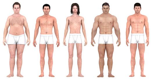 El Attelier-tipos de cuerpo masculino-2