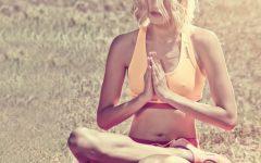 qué es el slow training